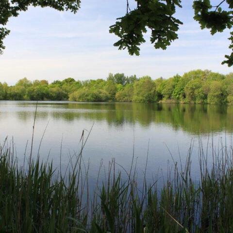 Golf Course Lakes