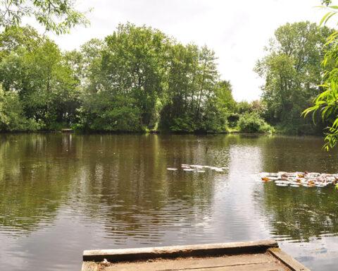 Knightscote Pond