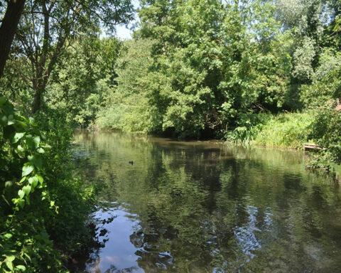 River Colne – Rickmansworth